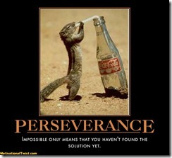 perseverance-solution-impossible-reality-rerun-motivational-1292115722