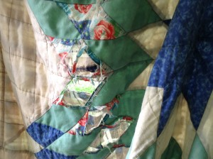 The raggedy quilt today.